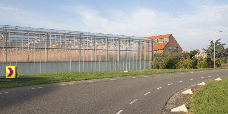 Zuid-Holland wil energieneutrale wegen