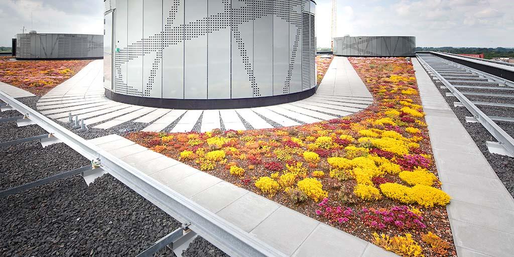 Norm voor begroeide daken nta 8292 bouw en uitvoering bouw en uitvoering - Trap voor daken ...