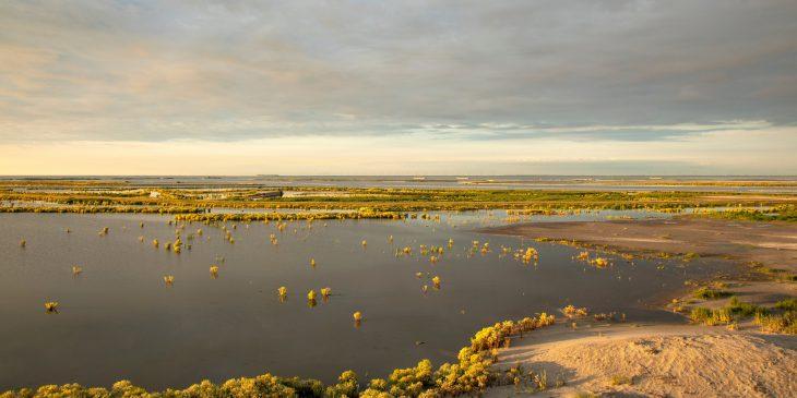 Duurzame versterking Houtribdijk Lelystad-Enkhuizen